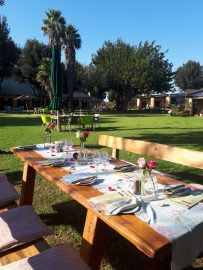 Tea Garden lawn seating large table_
